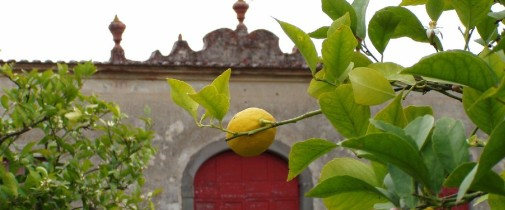 Villa La Magia,Magia di Primavera,Eventi